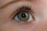 2.eye.png