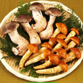 松きのこ、松なめこの味と価格、食べ方・レシピ!通販もある、おいしい新種です